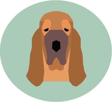 Bloodhound vector image of Maggie